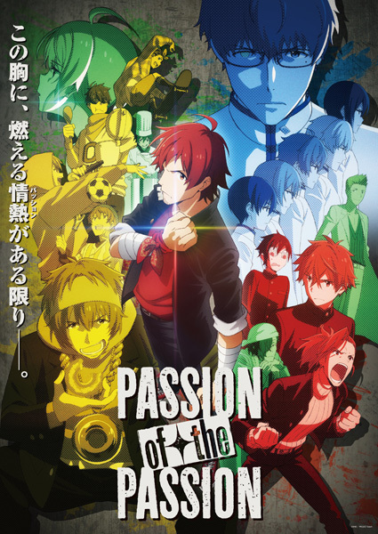 blu ray dvd第7巻収録 tv未放送特別編 passion of the passion キー